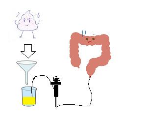 intestine2
